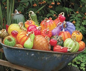 pumpkin_spring